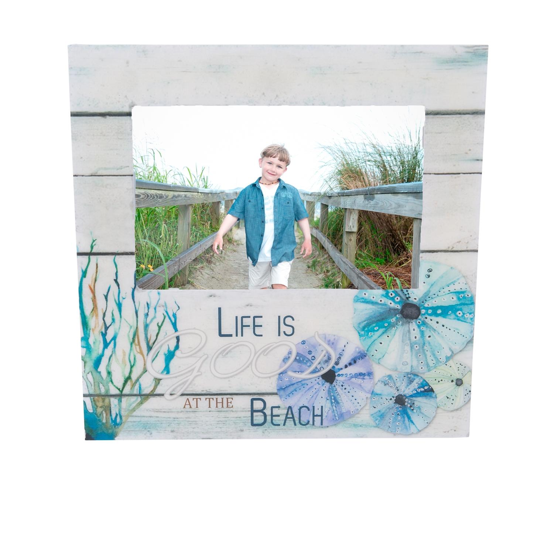 S Beachcombers Coastal Life